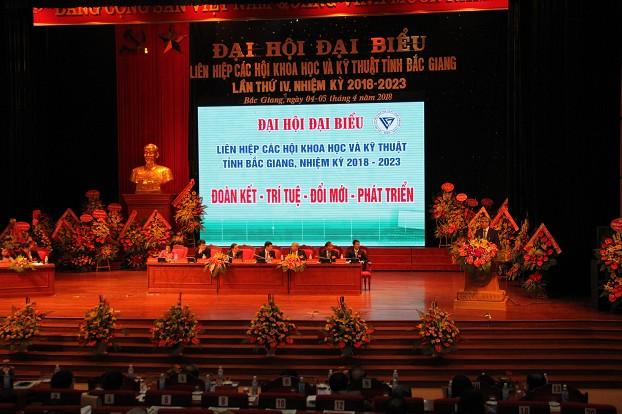 GS. TSKH Đặng Vũ Minh - Chủ tịch Liên hiệp hội Việt Nam phát biểu chỉ đạo Đại hội